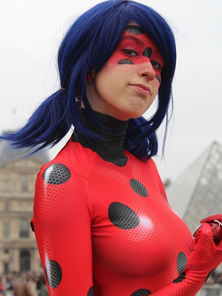 Vidoleo - Ladybug